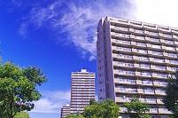 北海道 マンション街と緑の街路樹