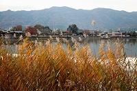 京都府 葦紅葉