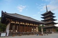 奈良県 興福寺の東金堂と五重塔