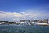 神奈川県 新安浦港