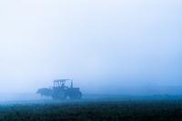 朝霧とトラクター