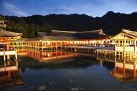 広島県 宮島 暮色の厳島神社