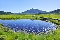 群馬県 中田代の池塘と燧ヶ岳