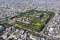 日本 二条城