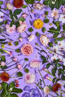 花コラージュ