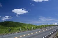 秋吉台の草原と青空