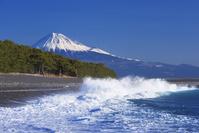 静岡県 三保の松原と富士山