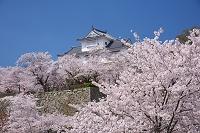 岡山県 津山城