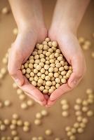 大豆を持つ手