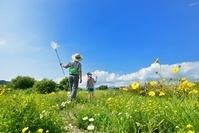 花の草原のファミリー