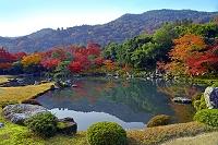 京都府 天龍寺