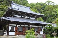 静岡県 清見寺 佛殿