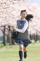 桜と走る女子中学生