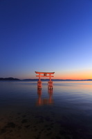 滋賀県 高島市 白髭神社 夕景 ライトアップ