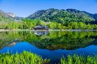 栃木県 奥日光 新緑の湯ノ湖とレストハウスと金精峠