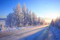 北海道 輝く雪道と朝日