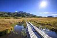 秋田県 竜ヶ原湿原と鳥海山