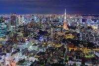 東京都 東京タワー 夜景 六本木ヒルズから