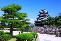 長野県 松本城 天守閣