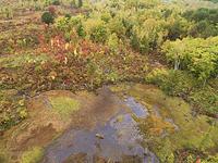 長野県 紅葉の乗鞍高原 どじょう池