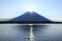 静岡県 田貫湖 ダイアモンド富士と影富士