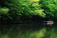 岩手県 一関市 猊鼻渓 舟下り