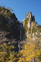 北海道 層雲峡 銀河の滝の紅葉