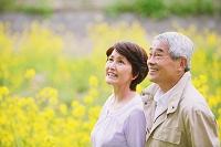 菜の花とシニア夫婦