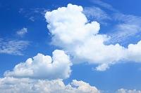 北海道 上富良野町 青空と雲