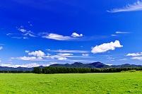 北海道 日高の牧場地帯