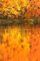 長野県 紅葉の御射鹿池