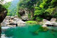 高知県 中津渓谷 中津川