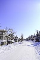 北海道 住宅街の雪の道