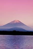 山梨県 紅富士と精進湖