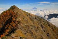 山梨県 北岳登山道から望む八本歯ノ頭と富士山