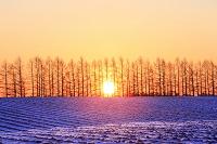 北海道 十勝平野の日の出