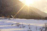 京都府, 雪化粧の棚田と残照