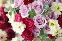 パープル色のバラとラナンキュラス