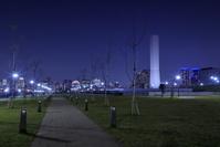 東京都 豊洲ぐるり公園の夜景