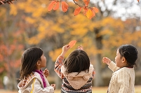 紅葉の公園で遊ぶ女の子たち