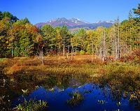 長野県・乗鞍高原 どじょう池と乗鞍岳