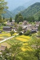 富山県 南砺市 五箇山 相倉合掌造り集落