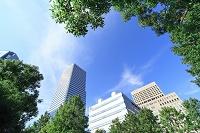 大阪府 見上げたビル