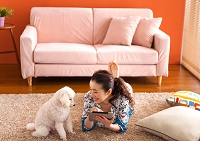 タブレットを操作する日本人女性と犬