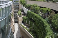 大阪府 建物の緑化