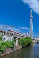 東京都 スカイツリーと電車