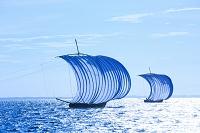 茨城県 霞ヶ浦 風の力で進む帆引き船