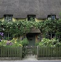 イギリス 花の咲くガーデン