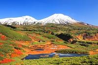 北海道 沼ノ平 紅葉と旭岳