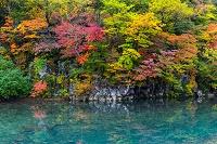 秋田県 法体の滝下